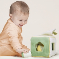 The World of Good Developmental Toys